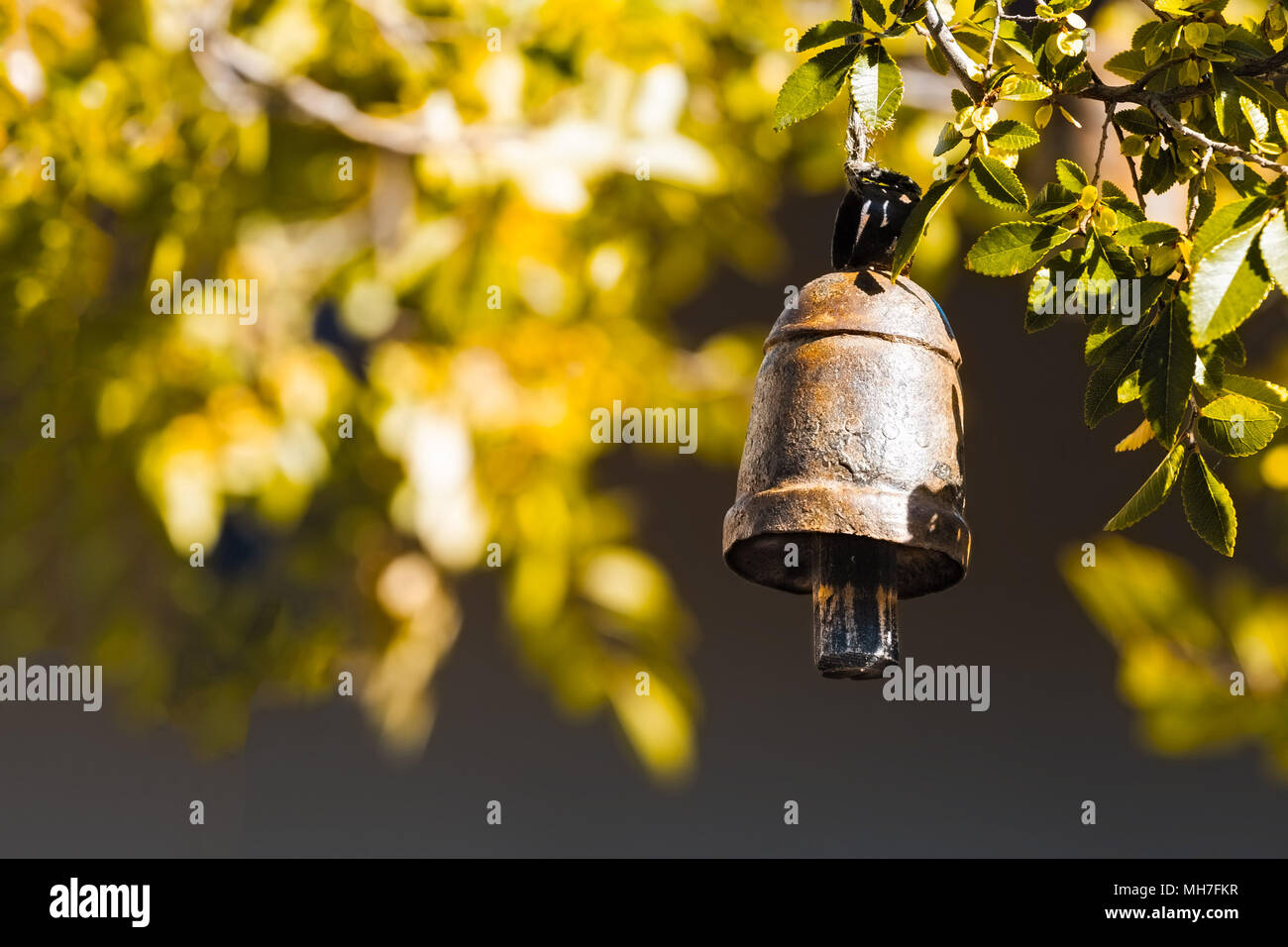 Bronze temple ritual bell - spiritual concept with copy space - Stock Image
