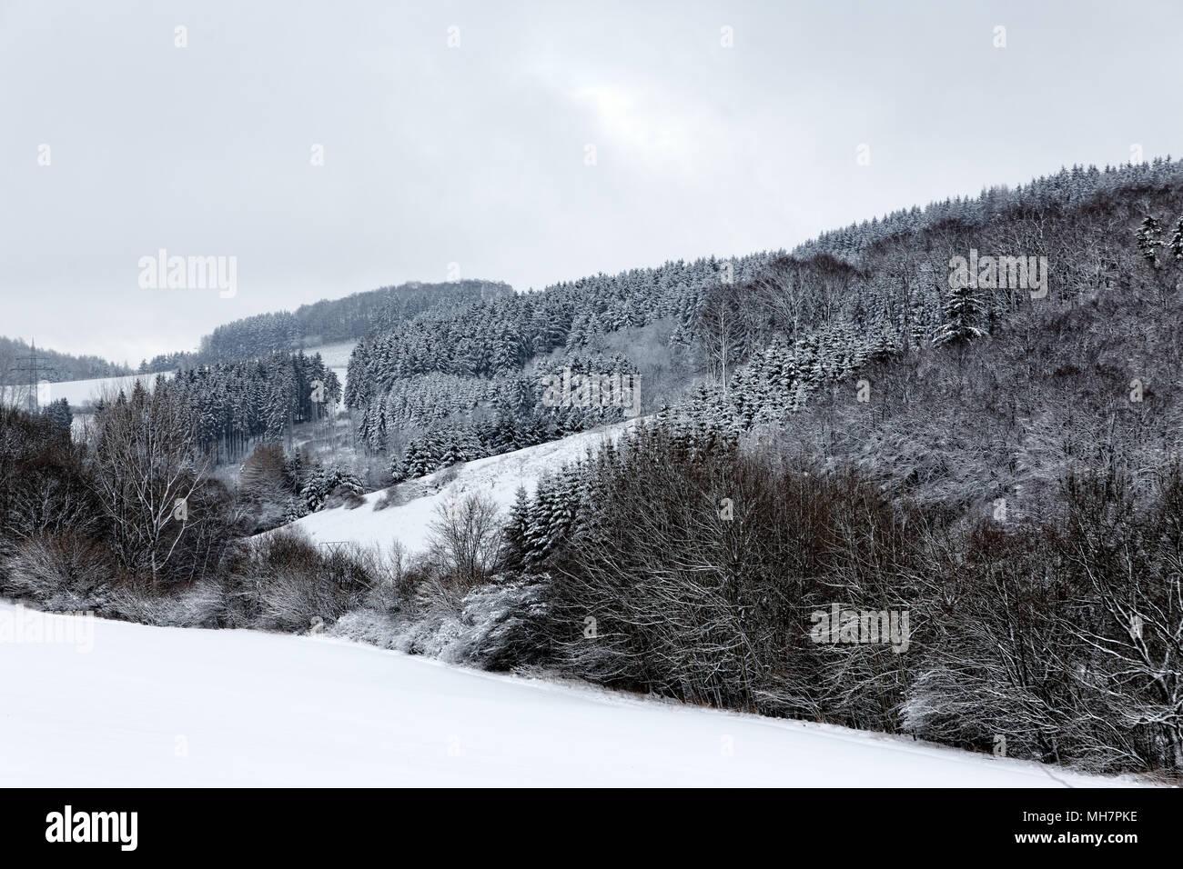 Waldeck Castle. Schloss Waldeck. - Stock Image