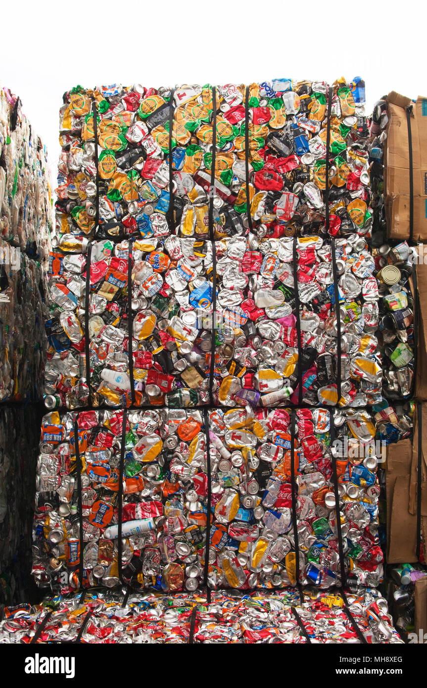 Aluminium cans being processed at a recycling plant. - Stock Image