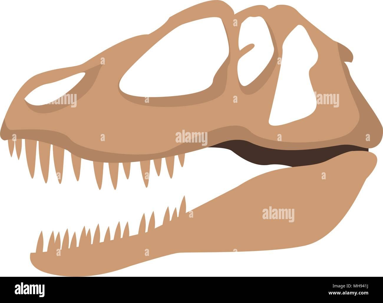 Dinosaur skull isolated - Stock Image