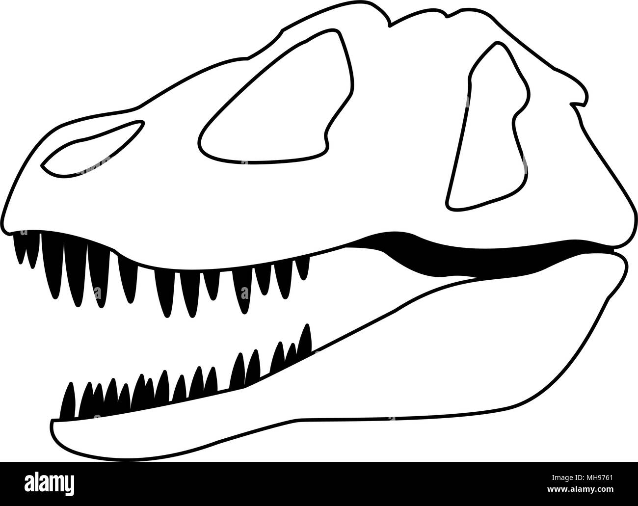 Dinosaur skull isolated on black and white colors - Stock Image