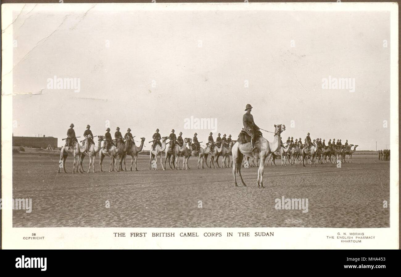 The First British Camel Corps in the Sudan circa 1915 - Stock Image