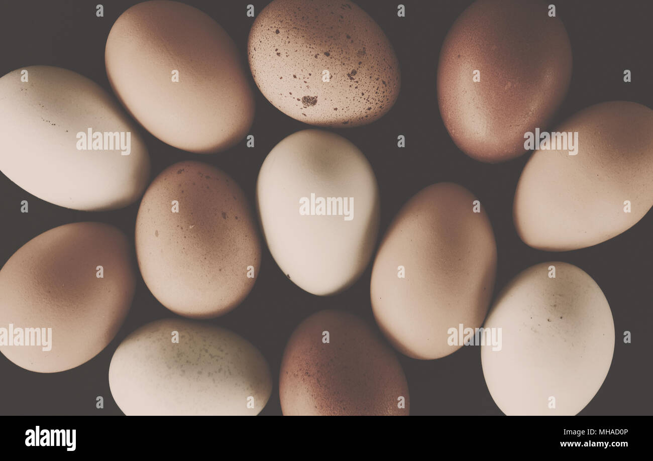 Farm fresh cage free chicken eggs with brown and sepia tones for vintage style food. - Stock Image