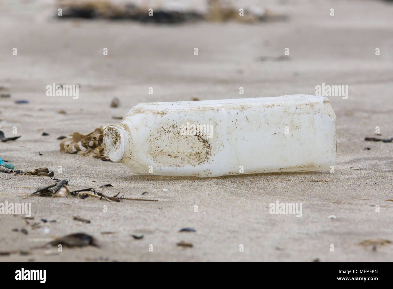 Plastic milk bottle washed up on a sandy beach an example of the many pieces of garbage in the sea around the UK - Stock Image