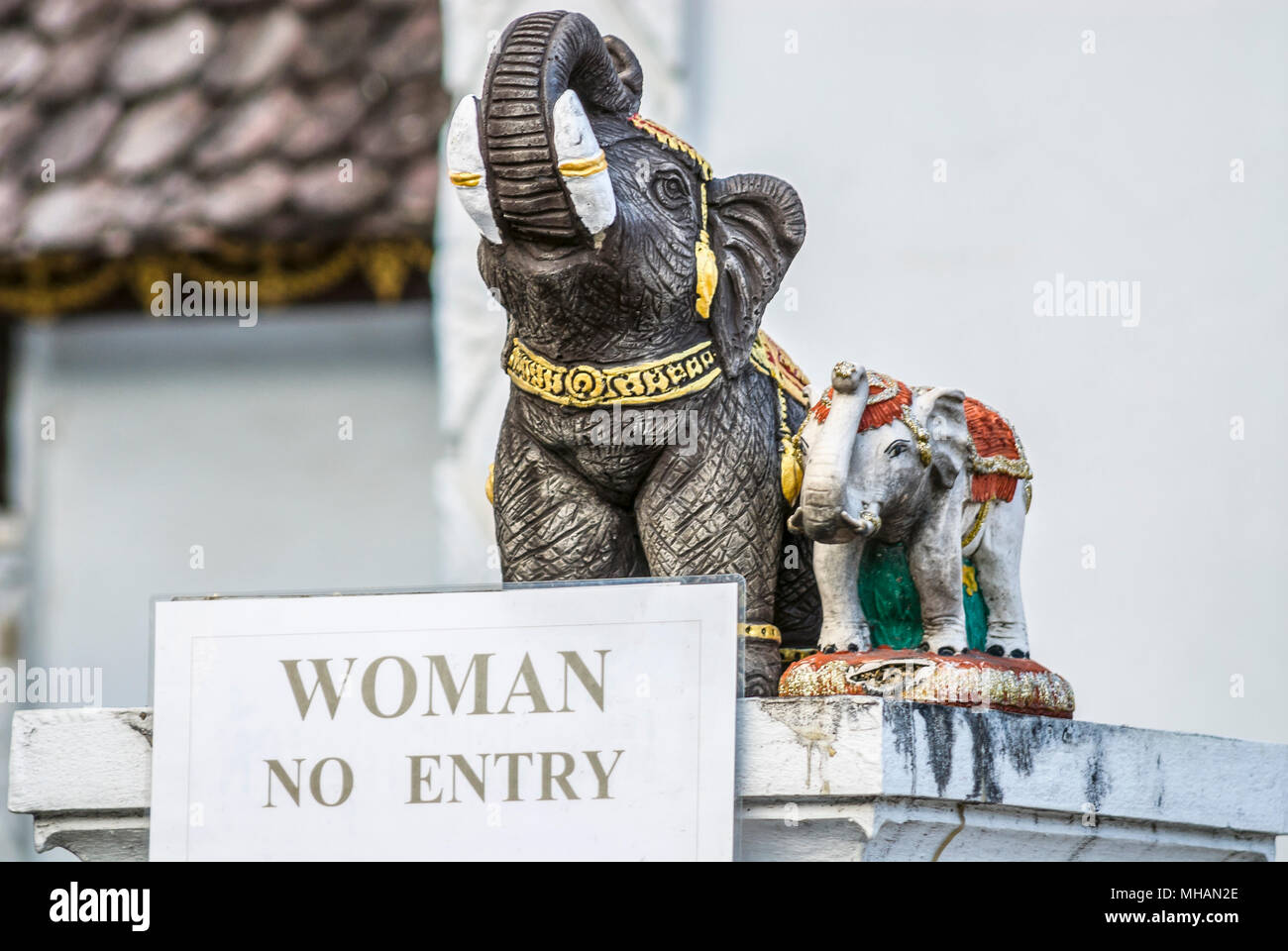 No Woman entry sign and elephant figurines at the buddhist temple Wat Chedi Luang, Chiang Mai, Thailand - Stock Image