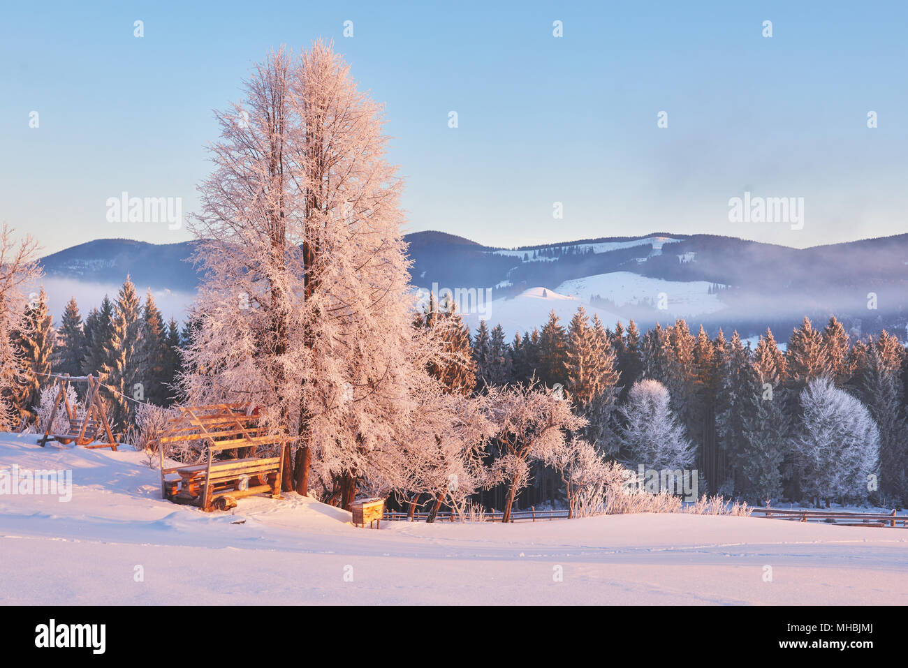 Spacious Winter Landscape And Mountains In Winter Greeting Card