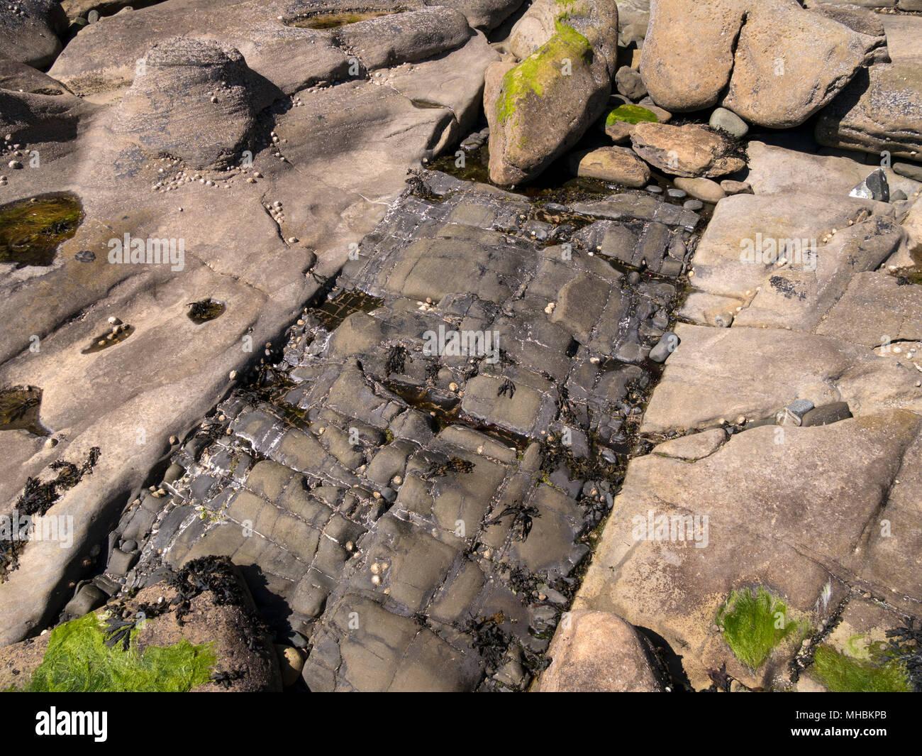 Seam of basalt igneous intrusion in beach rocks, Glasnakille, Isle of Skye, Scotland, UK - Stock Image