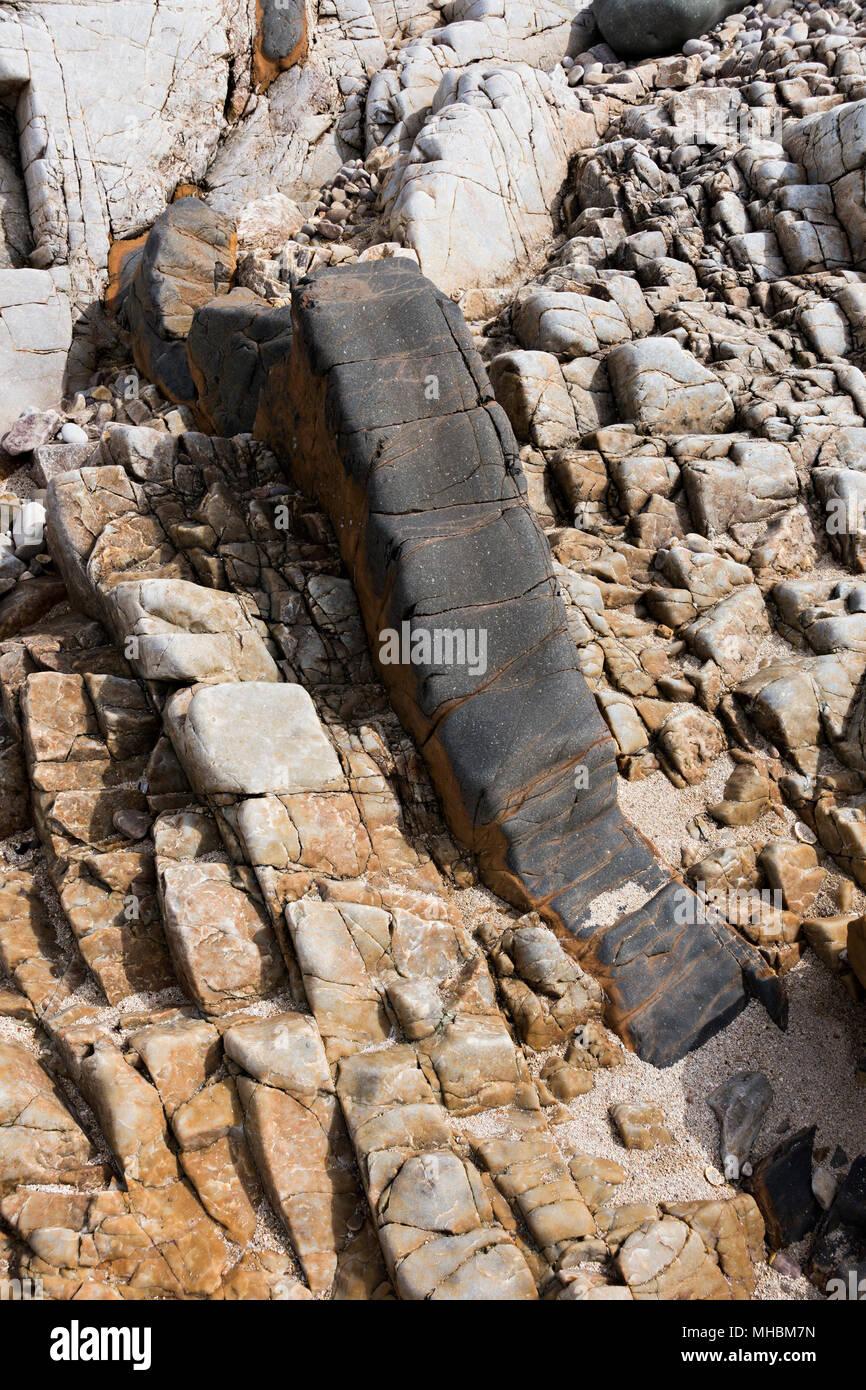 Small dark palaeogene igneous basalt intrusion in lighter colour sedimentary arenite bedrock, Ord, Isle of Skye, Scotland, UK - Stock Image