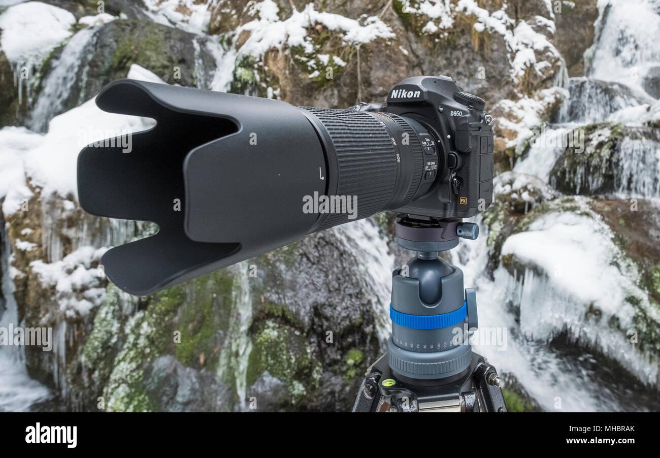 Nikon D850 with telephoto lens, camera on tripod - Stock Image