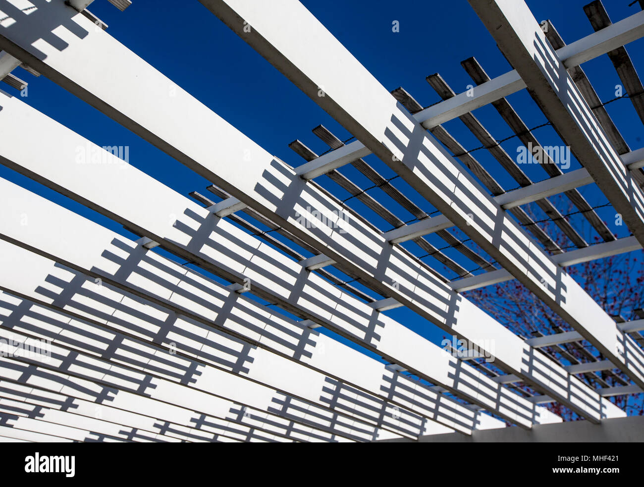 A open canopy with a blue sky Stock Photo