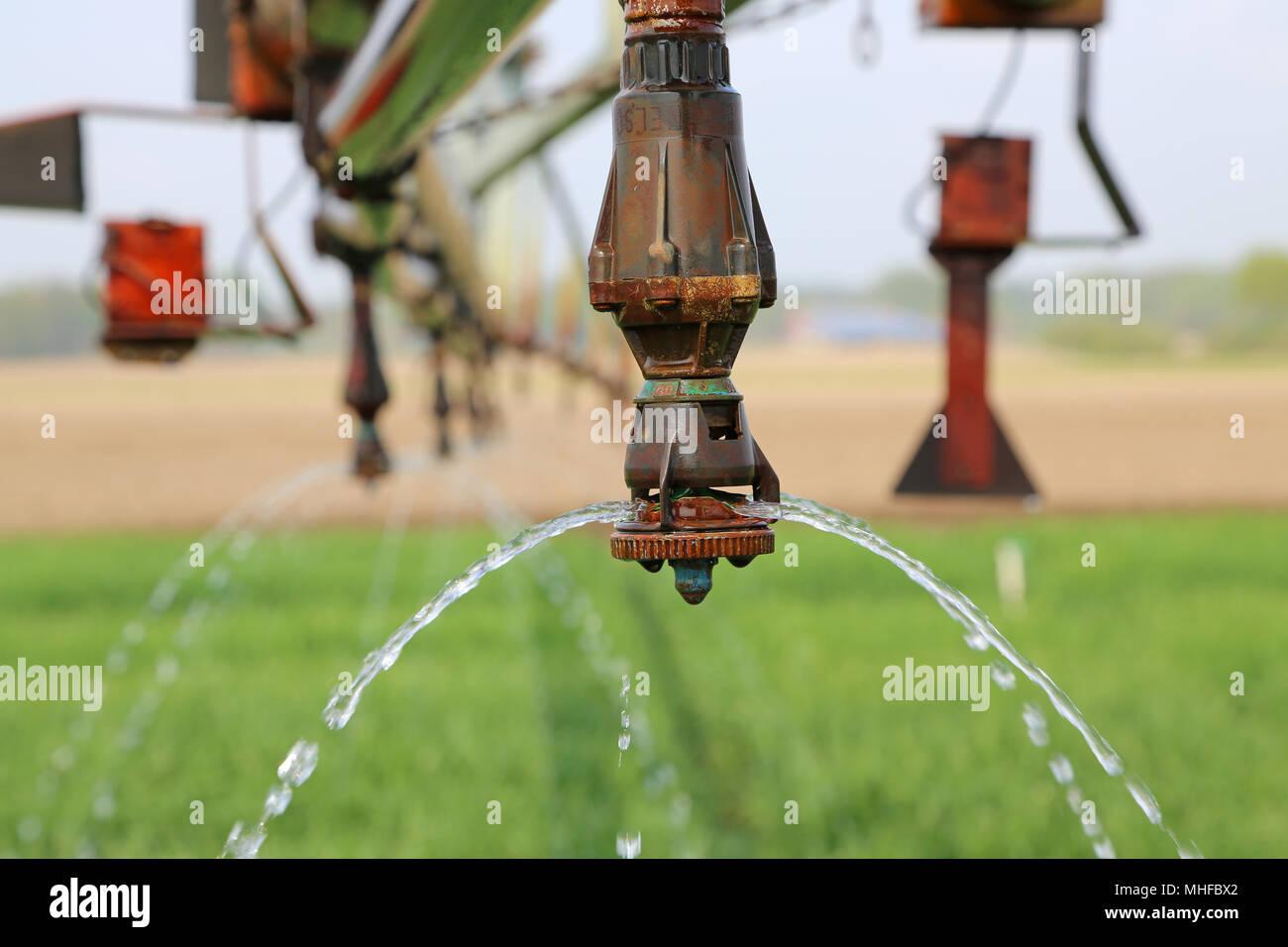 Wasser rinnt aus Beregnungsdüse Stock Photo