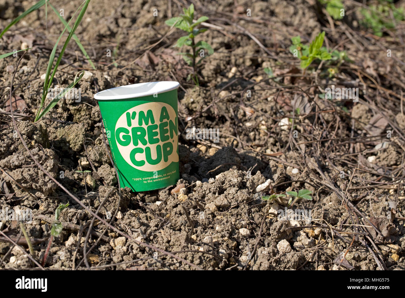 100% compostable Green recyclable coffee cups made with no plastic UK - Stock Image