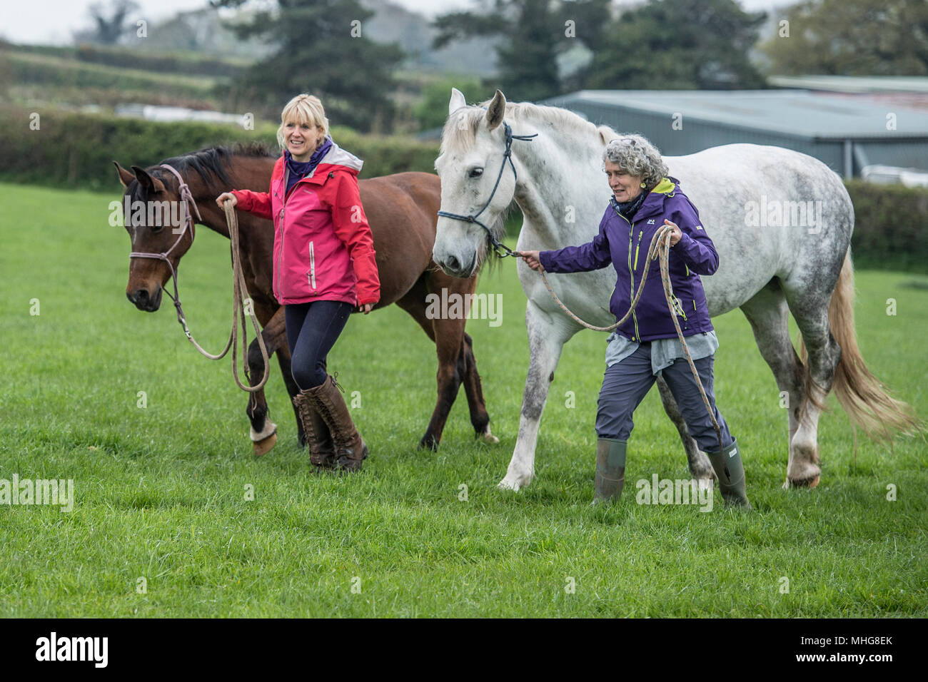 2 owners and their horses - Stock Image