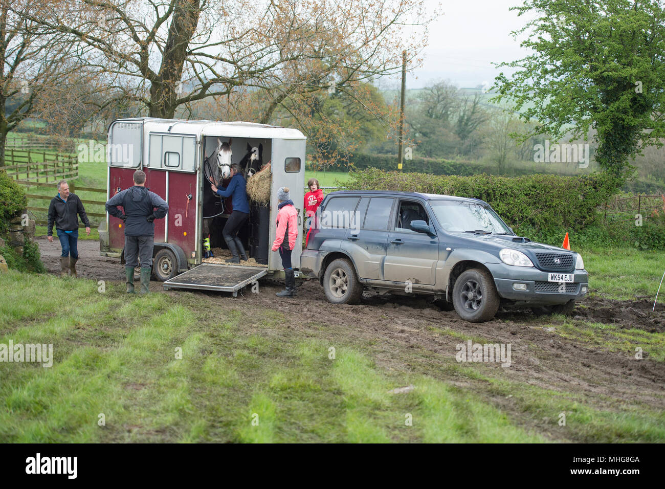 unloading a horsebox in the mud Stock Photo