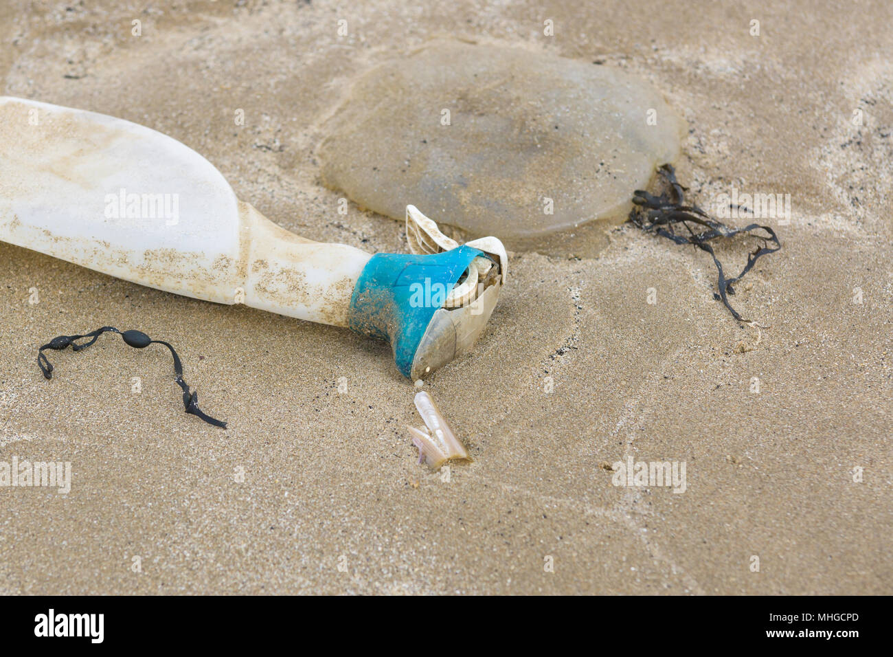 Plastic bottle lying next to a dead jelly fish washed up on a beach in the UK an example of the plastic pollution in the sea - Stock Image