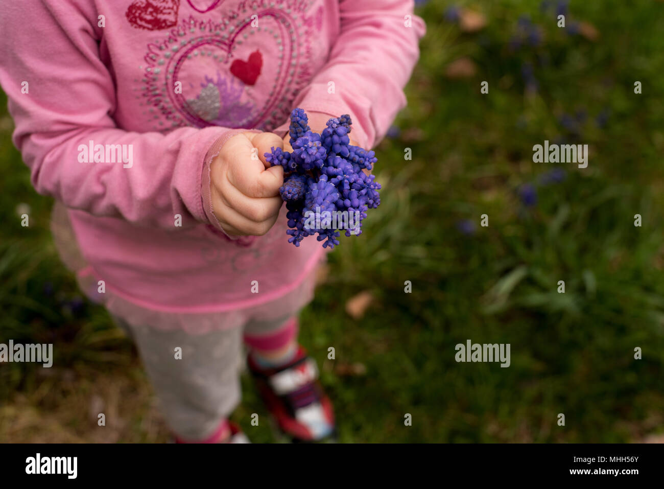 Girl With Purple Flowers Stock Photos & Girl With Purple Flowers ...
