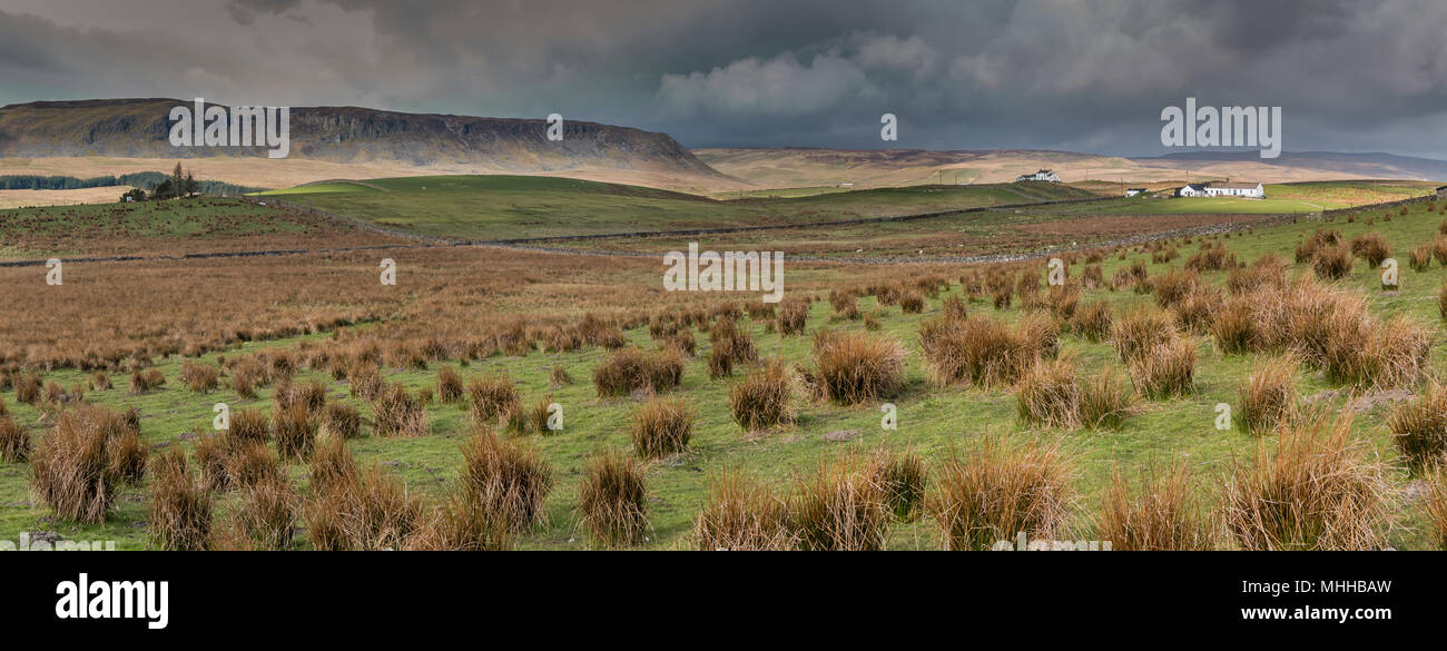 North Pennines panoramic landscape, towards Cronkley Scar and Widdybank Fell from Hanging Shaw, Teesdale, UK - Stock Image