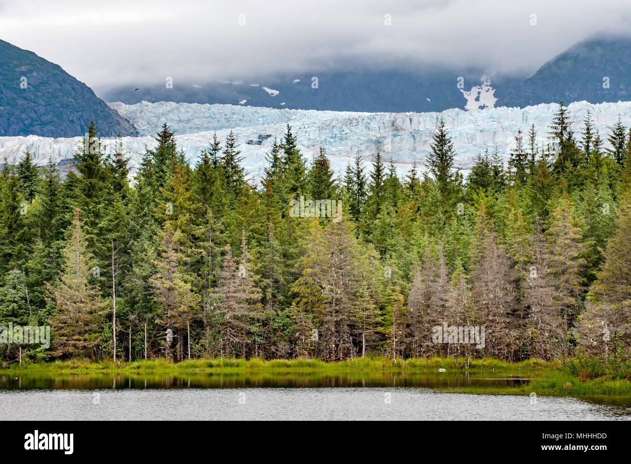 Mendenhall Glacier near Juneau, Alaska - Stock Image