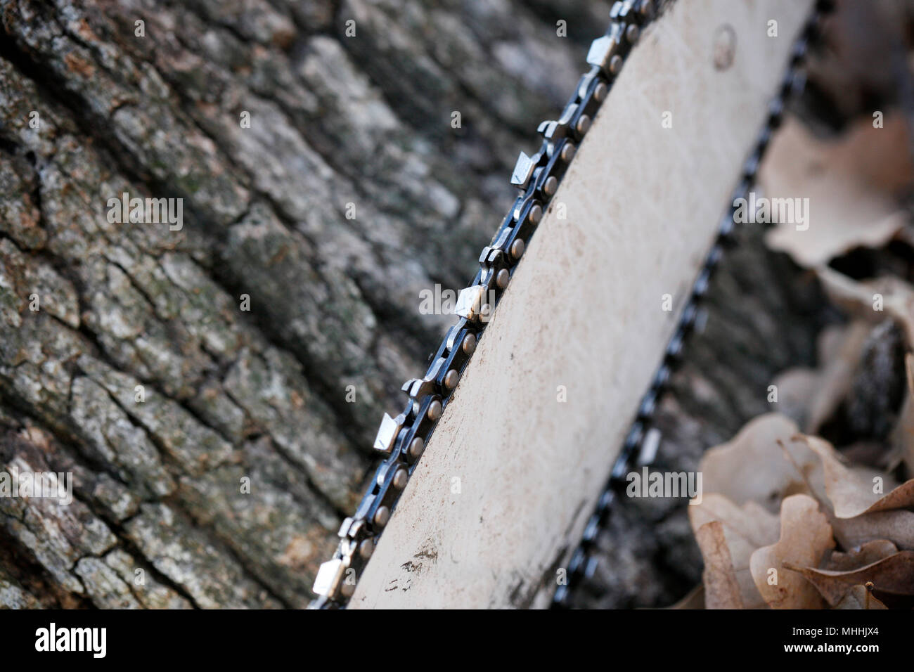 Close up of chainsaw on tree background. Selective Focus. Stock Photo