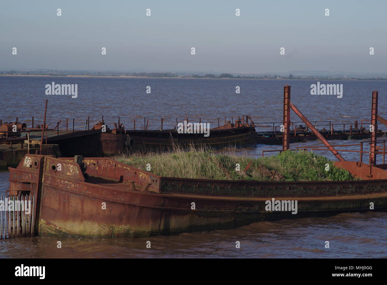 Rotting, abandoned, derelict barges at Paull, near Hull, UK - Stock Image
