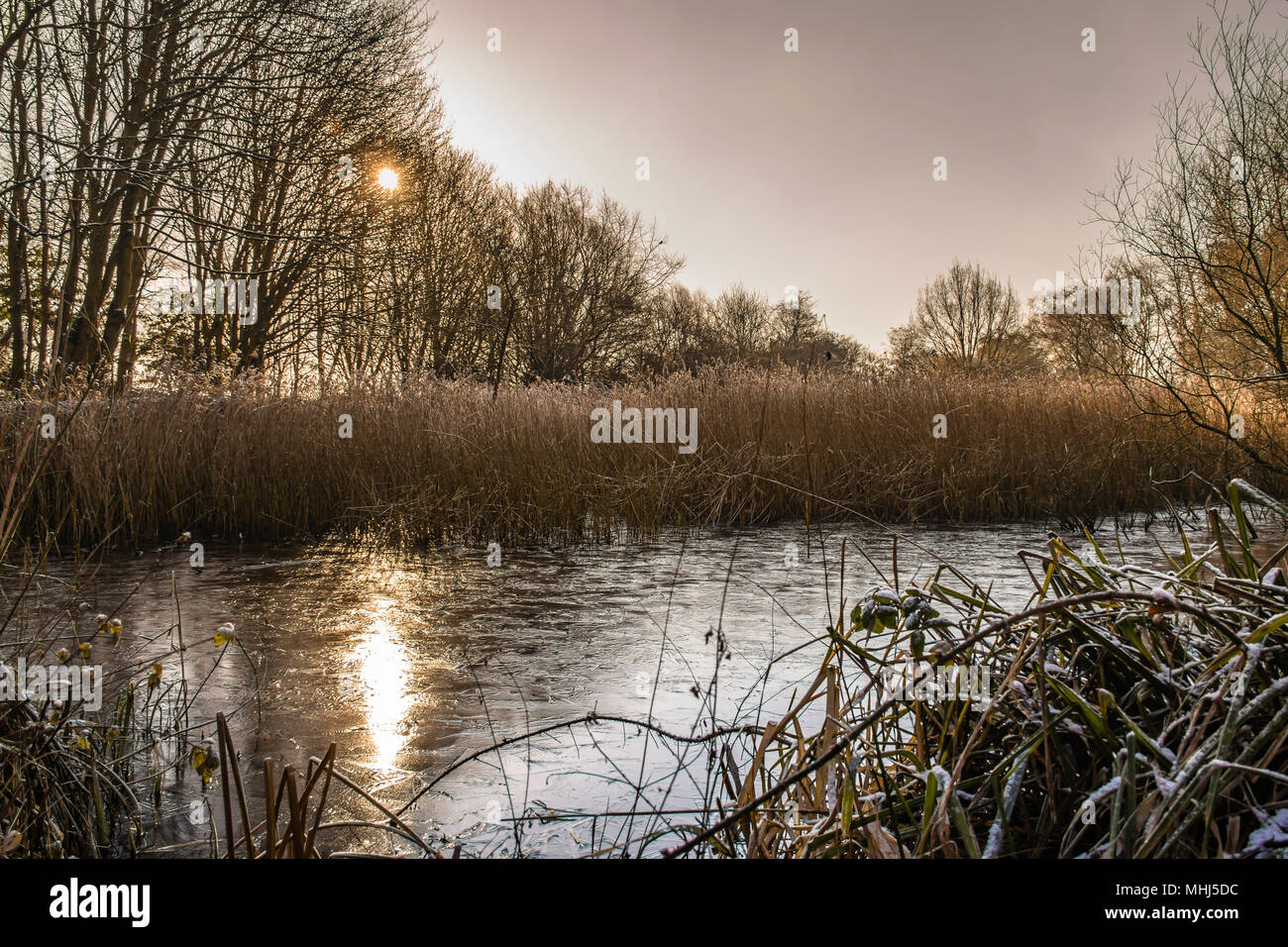Westport lake on winter day.Stoke on Trent ,Staffordshire,Uk.Sun reflection in frozen pond.Staffordshire landscape uk.Tranquility,beautiful morning. - Stock Image