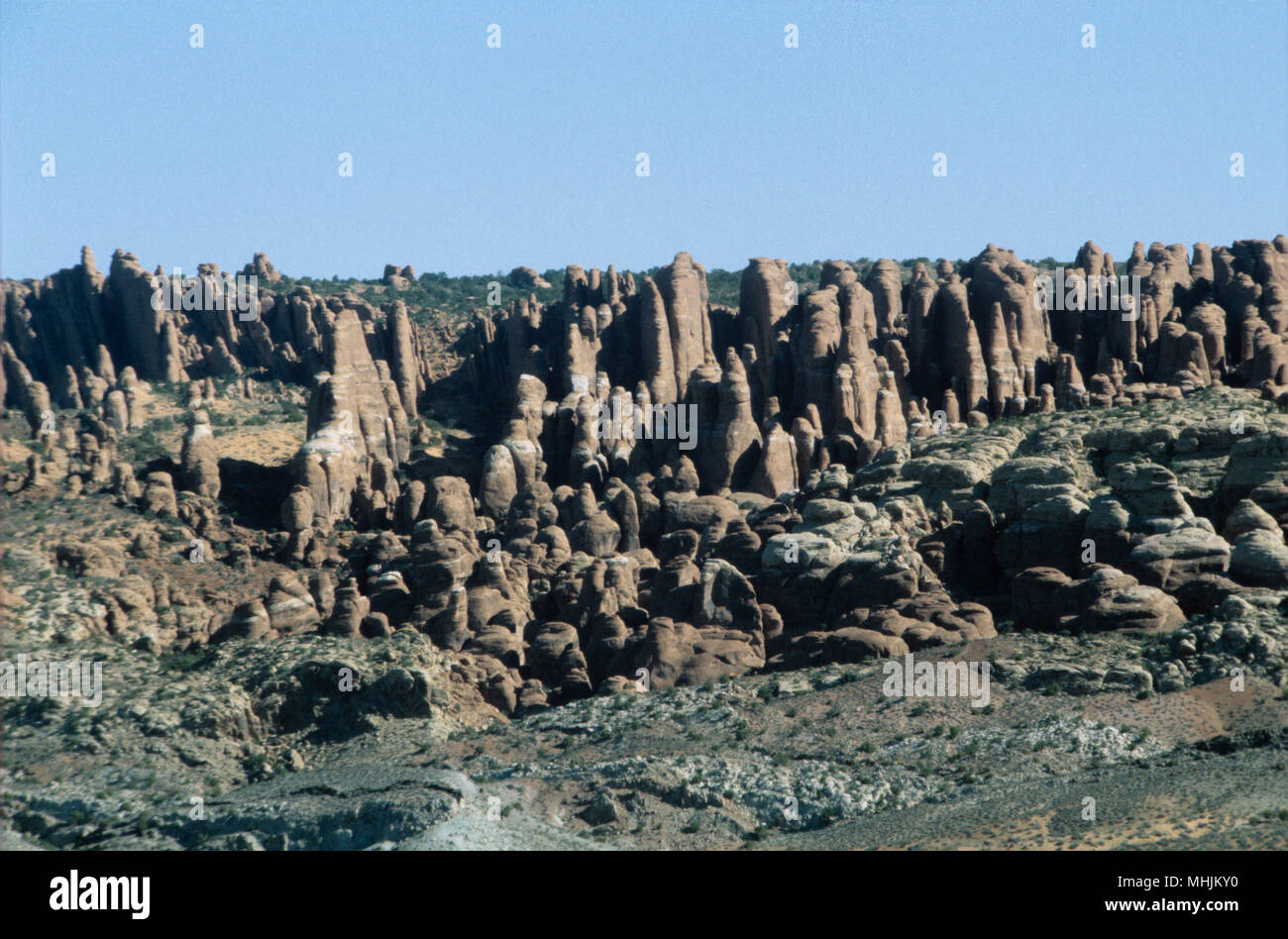 The long, needle-like pillars of sandstone make up both the maze Andy the needles sections of Canyonland National Park in Utah. - Stock Image