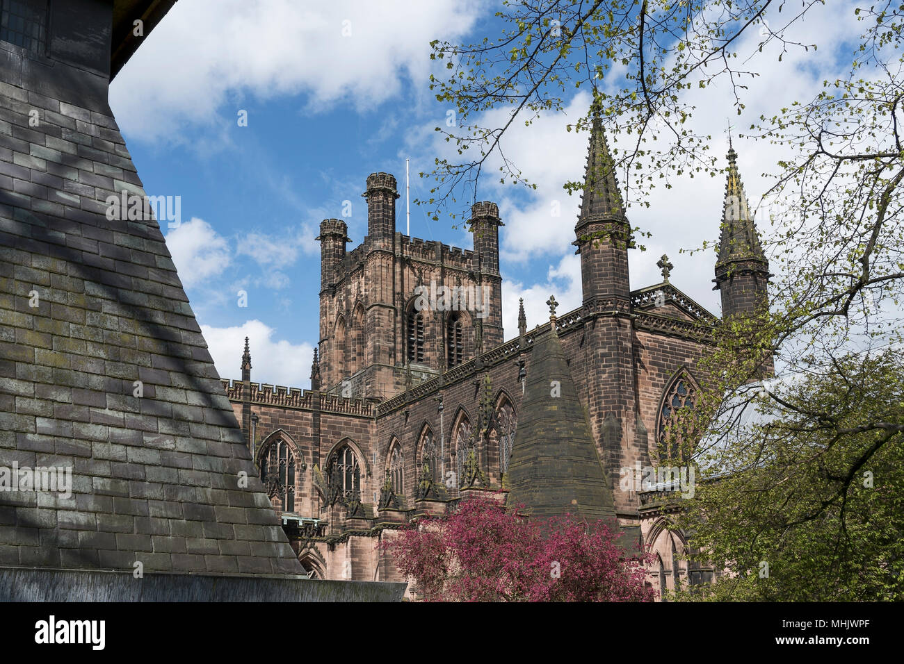 Chester Cathedral viewed from the Walls and Bell Tower - Stock Image
