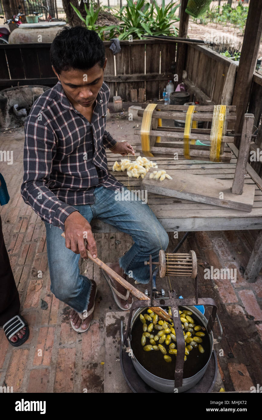 Man Removing Silk Thread From Silkworm Cocoons In Boiled Water And