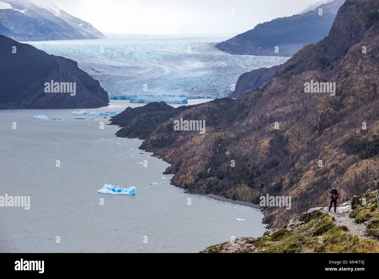 Hiker pauses for the view of Glaciar Grey, Torres del Paine National Park, Patagonia, Chile - Stock Image