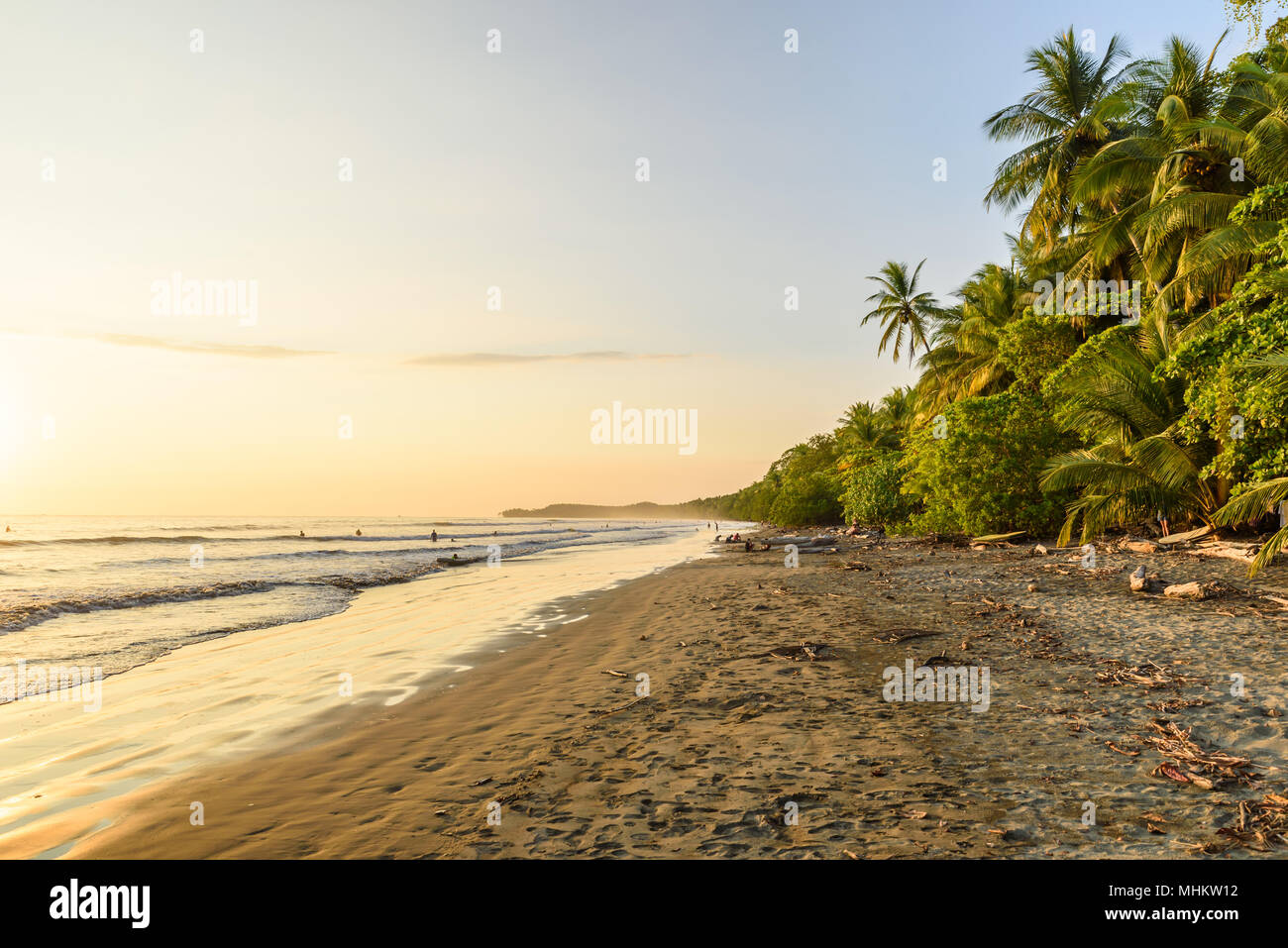 Sunset at paradise beach in Uvita, Costa Rica - beautiful beaches and tropical forest at pacific coast of Costa Rica - travel destination in central a - Stock Image