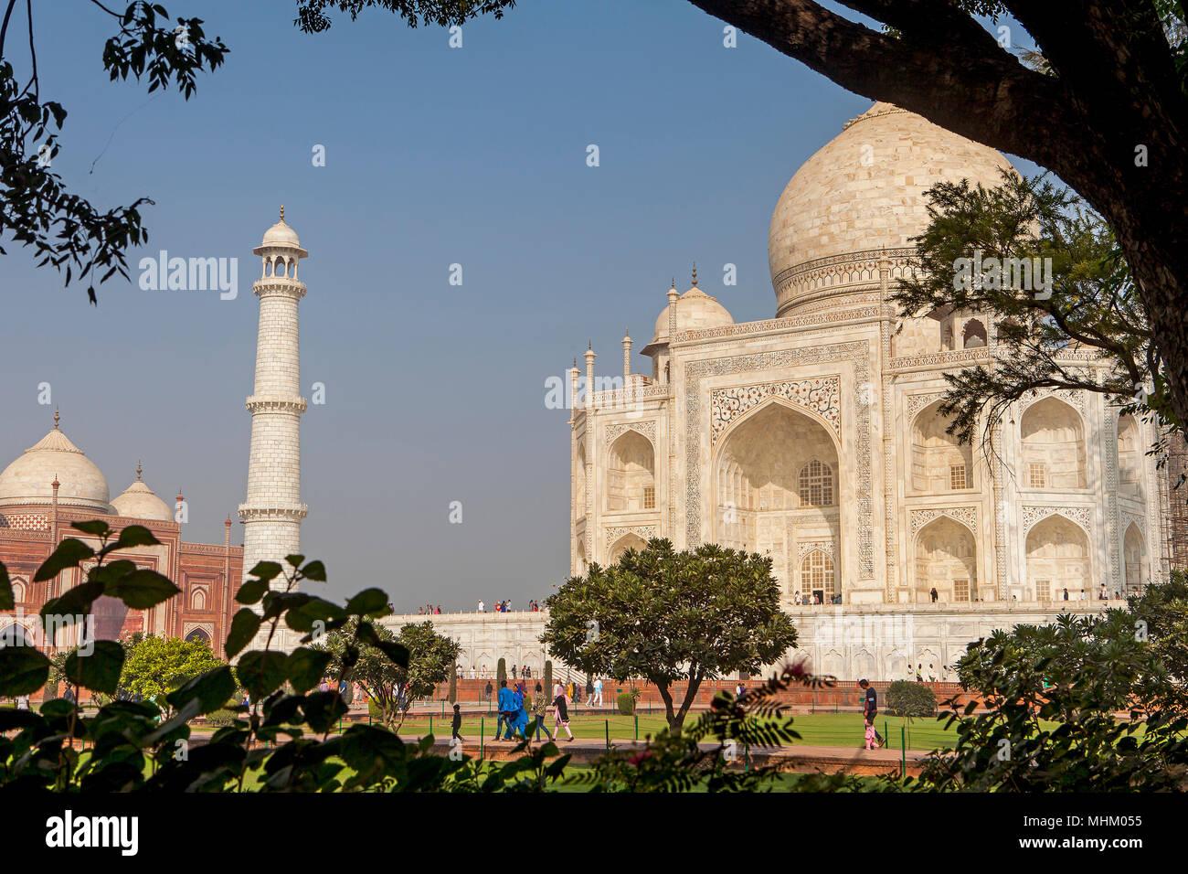 Taj Mahal, UNESCO World Heritage Site, Agra, Uttar Pradesh, India - Stock Image
