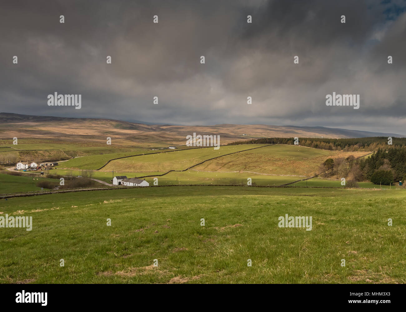 North Pennines landscape, towards Widdybank Fell from Langdon Beck, Teesdale, UK - Stock Image