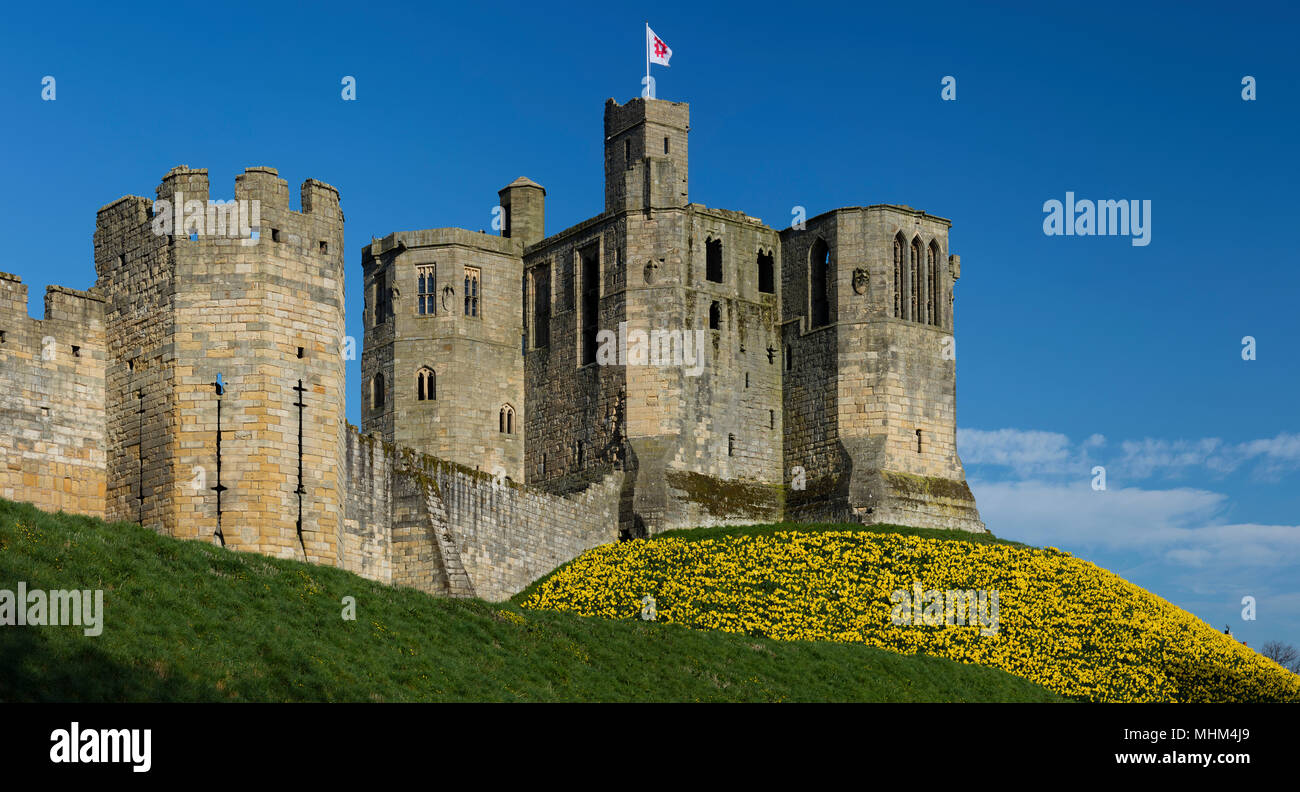 Warkworth Castle in Springtime under sunny skies, Warkworth, Northumberland, North East England, United Kingdom - Stock Image