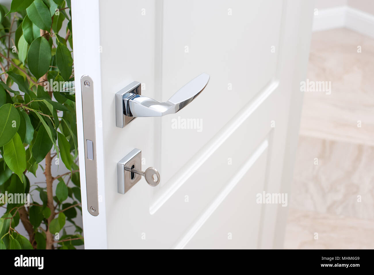 Closeup of door fittings. A white door with modern chrome handles, door lock with key. Interior decor with green plant. - Stock Image
