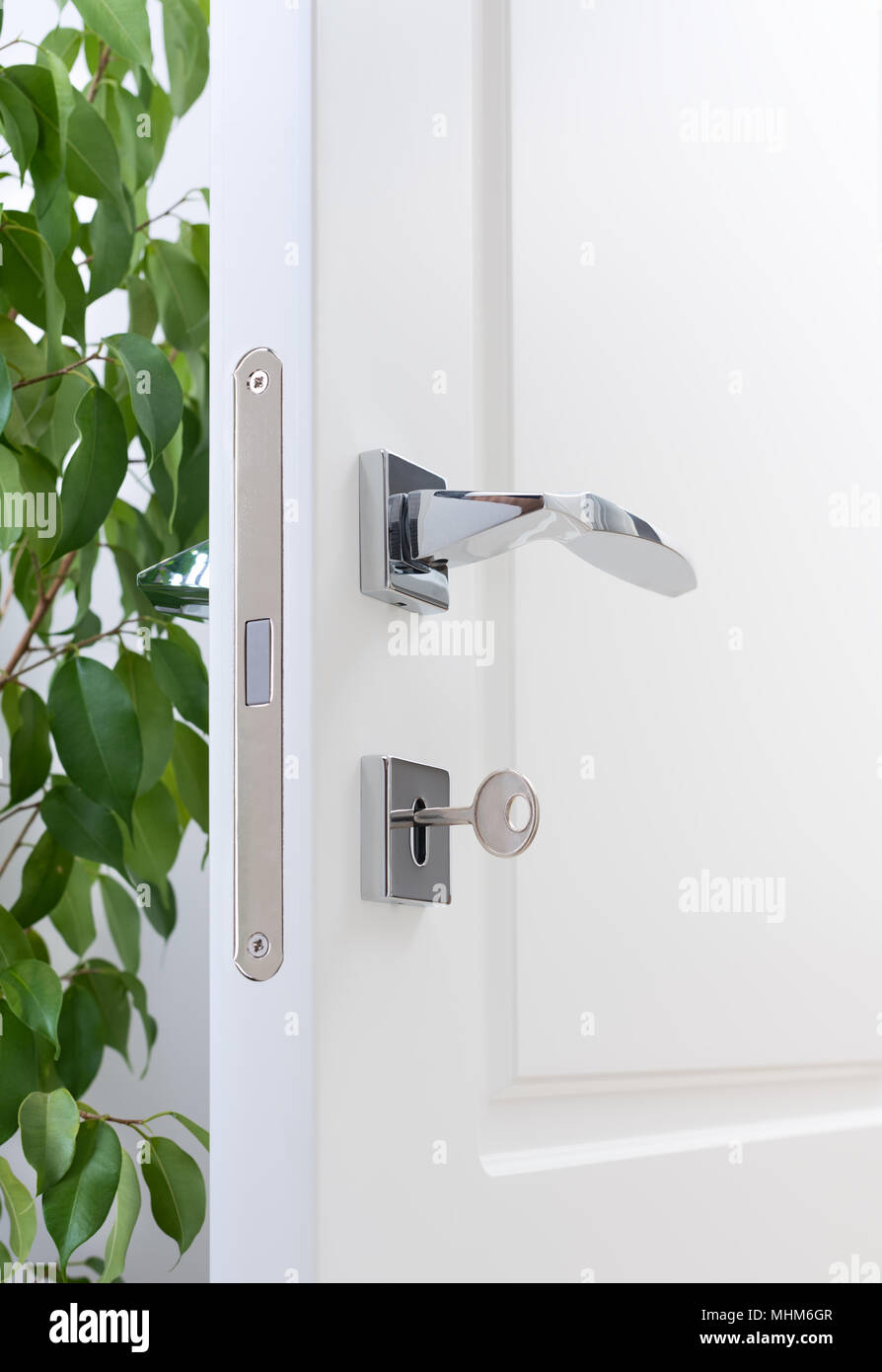 Closeup of door fittings. A white door with modern chrome handles, door lock with key. Interior decor with green plant - Stock Image