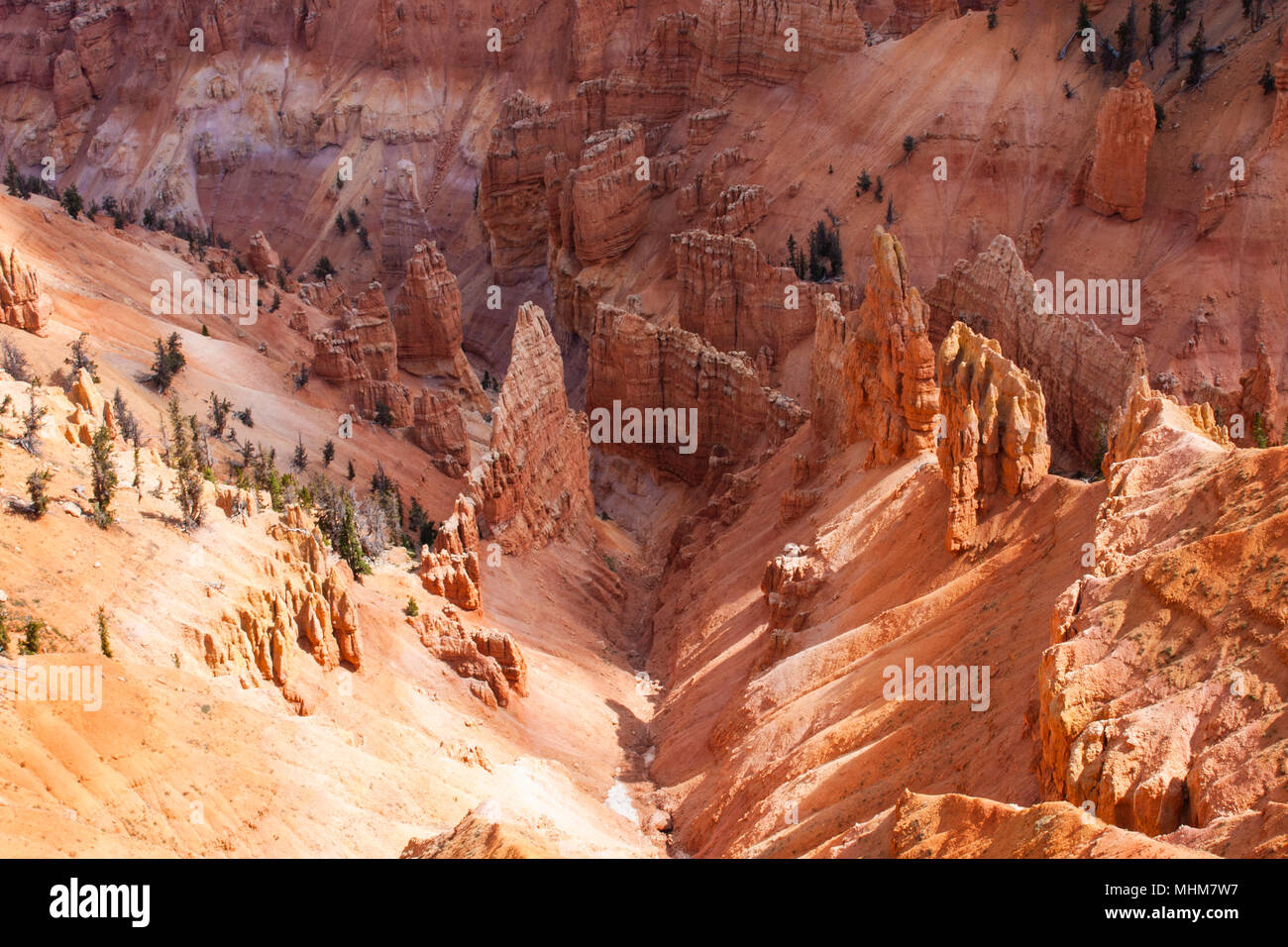 Hoodoos and colorful cliffs at Cedar Breaks National Monument in Utah.  The Indians called Cedar Breaks the 'Circle of Painted Cliffs.' At an elevatio - Stock Image