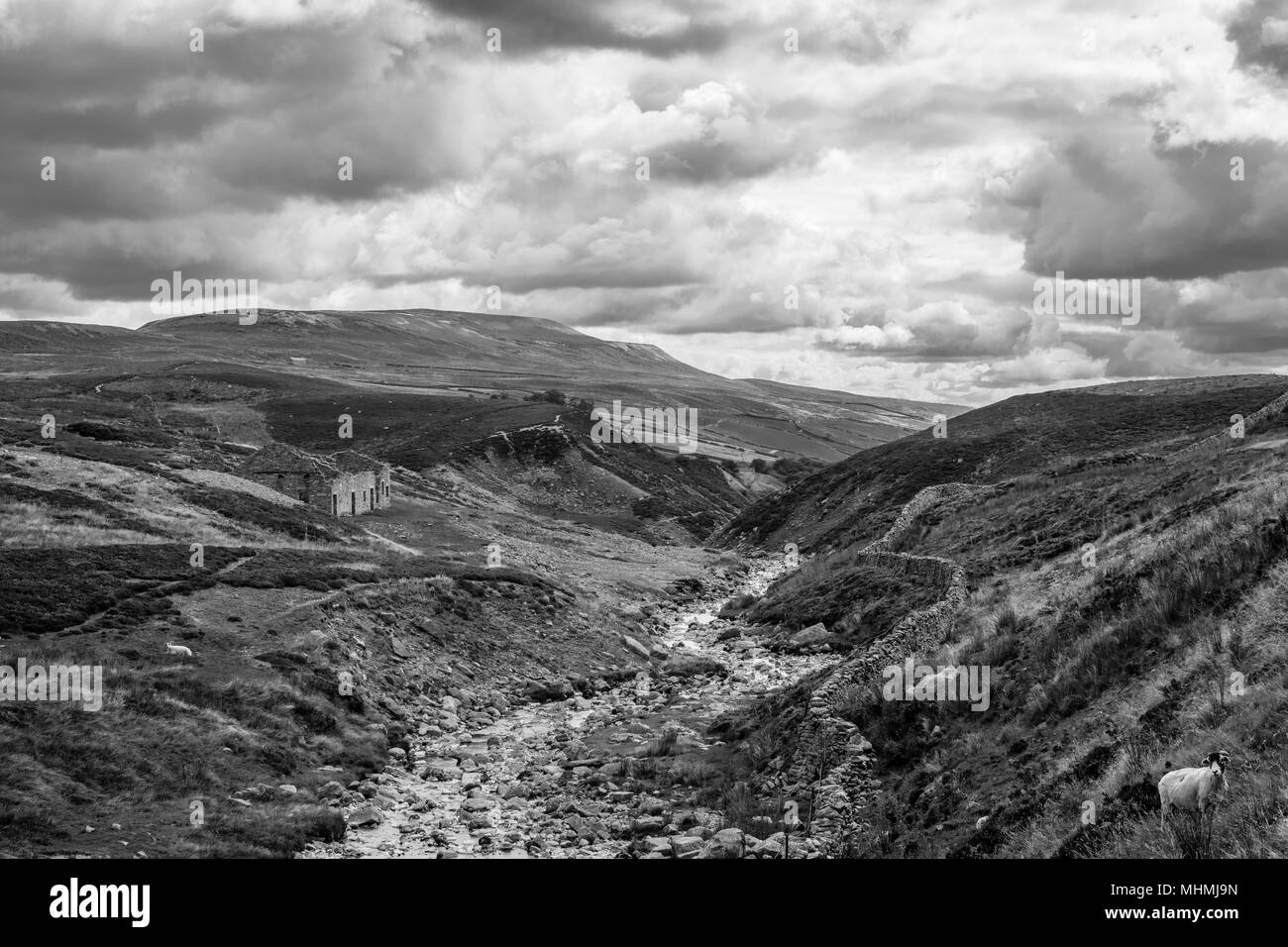 Beautiful shot of the north yorkshire dales near to langthwaite stock image