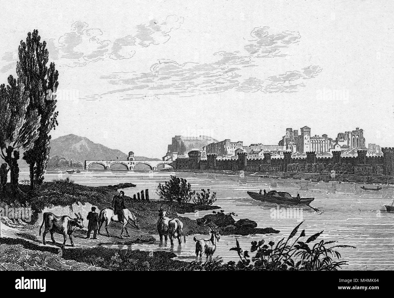 Avignon: the partially completed bridge in the background, with cattle in the foreground      Date: 1835 - Stock Image