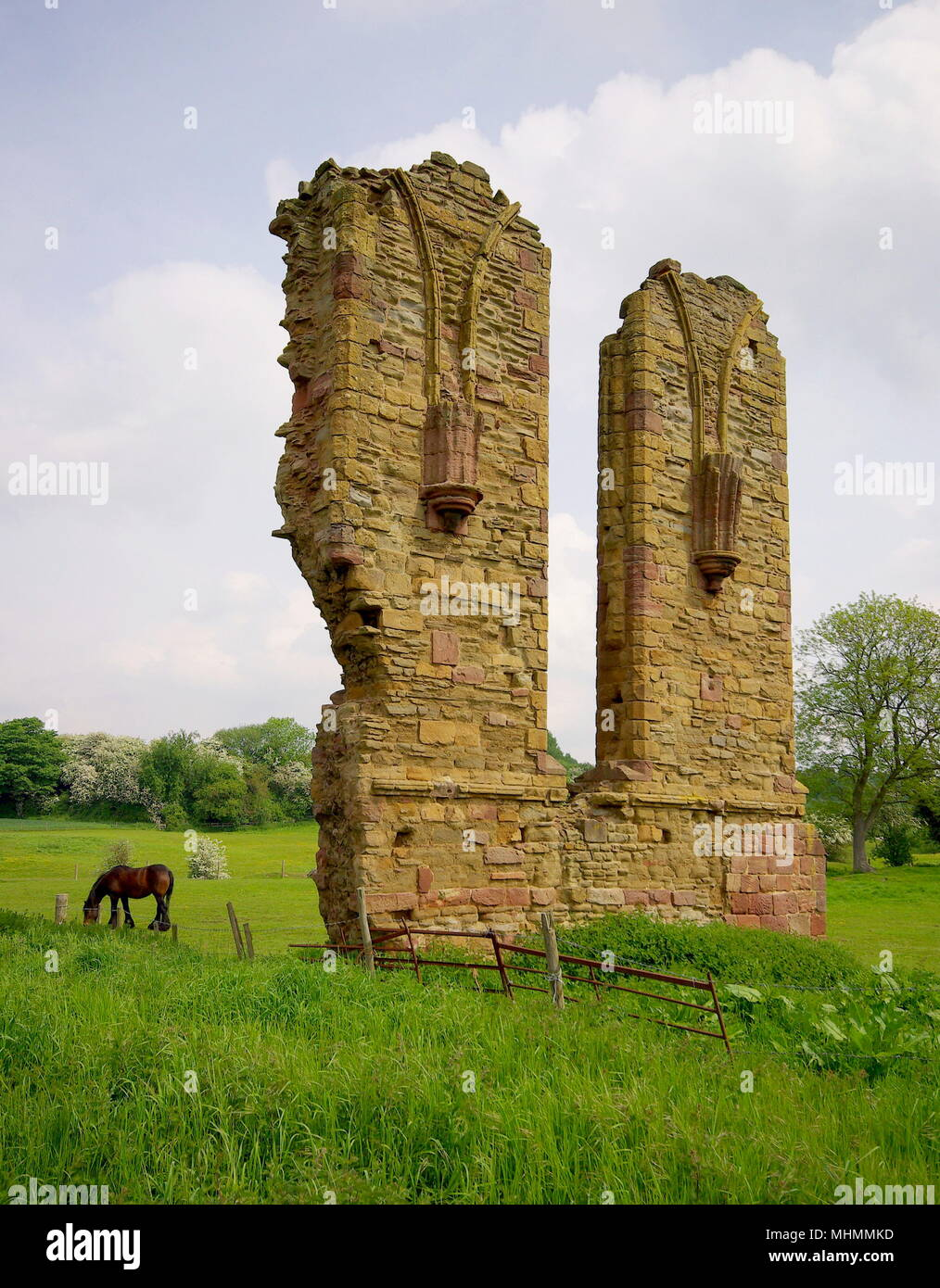 Part of the ruins of Halesowen Abbey in the West Midlands (previously in Shropshire, then later in Worcestershire).  The abbey was founded in 1215 by Premonstratensian canons under a grant from King John.  In later years much of the fabric was removed for building material and used in the surrounding area.      Date: May 2008 - Stock Image