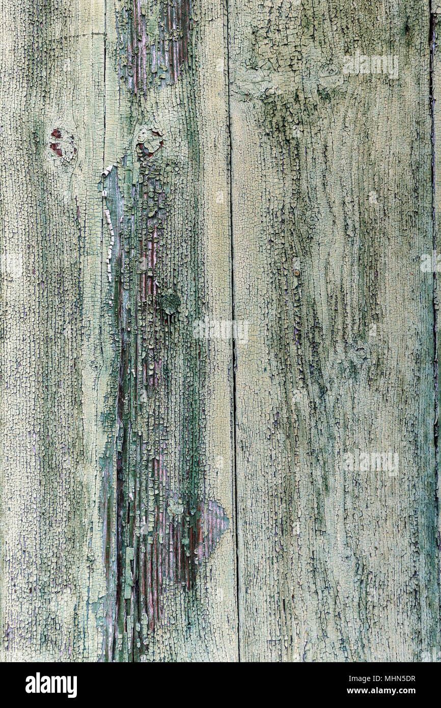 Old Rustic Painted Cracky Green Wooden Texture Or Background