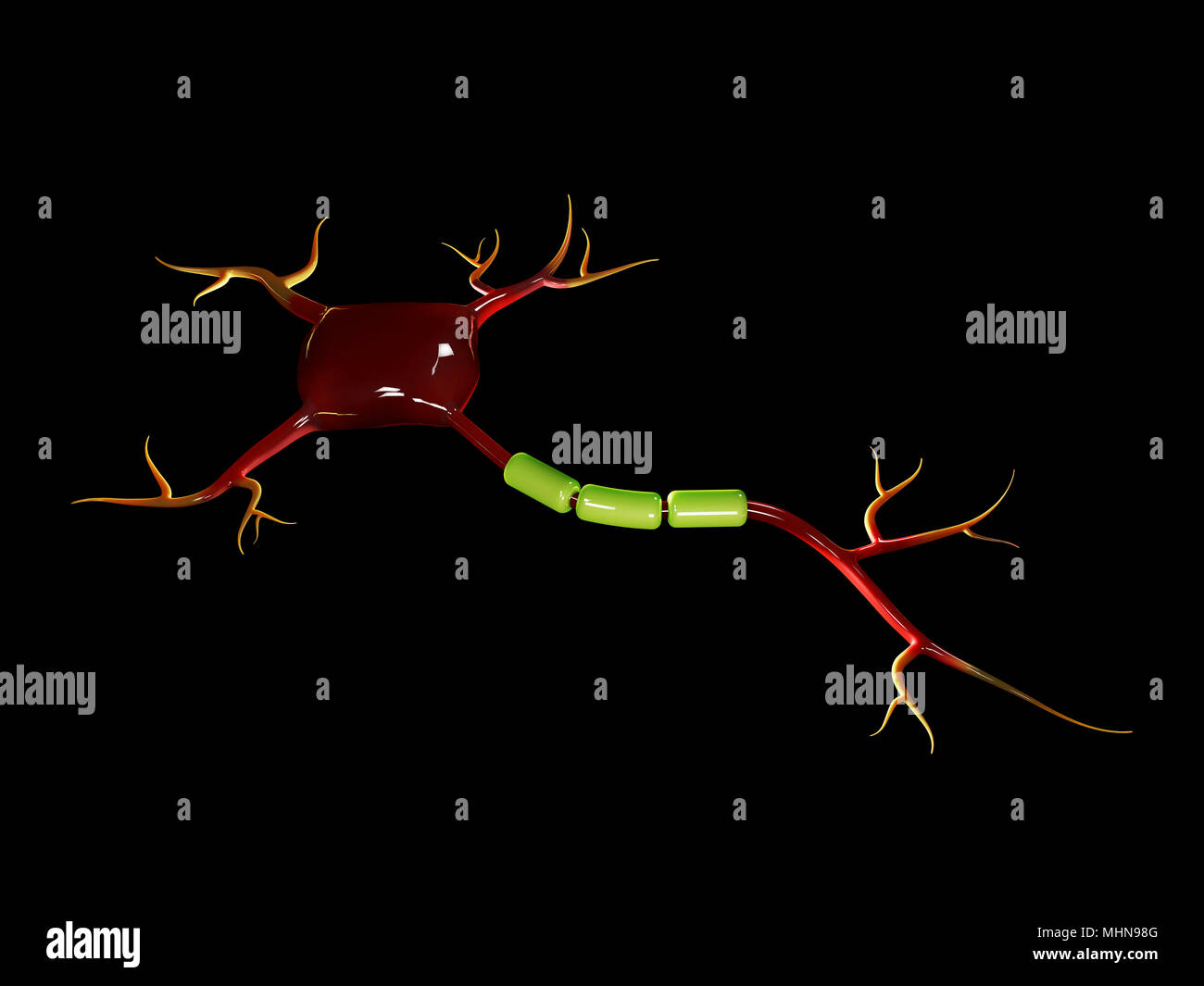 3d illustration of neuron cells, high resolution 3D illustration isolated black - Stock Image