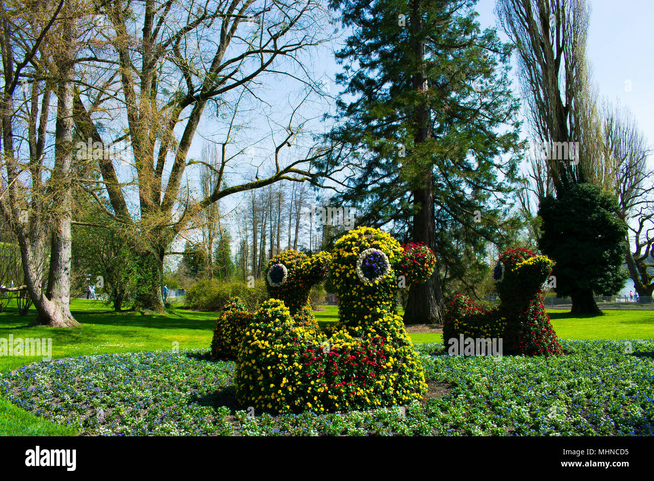 Floral figures of ducks on the island of Mainau in Germany. - Stock Image