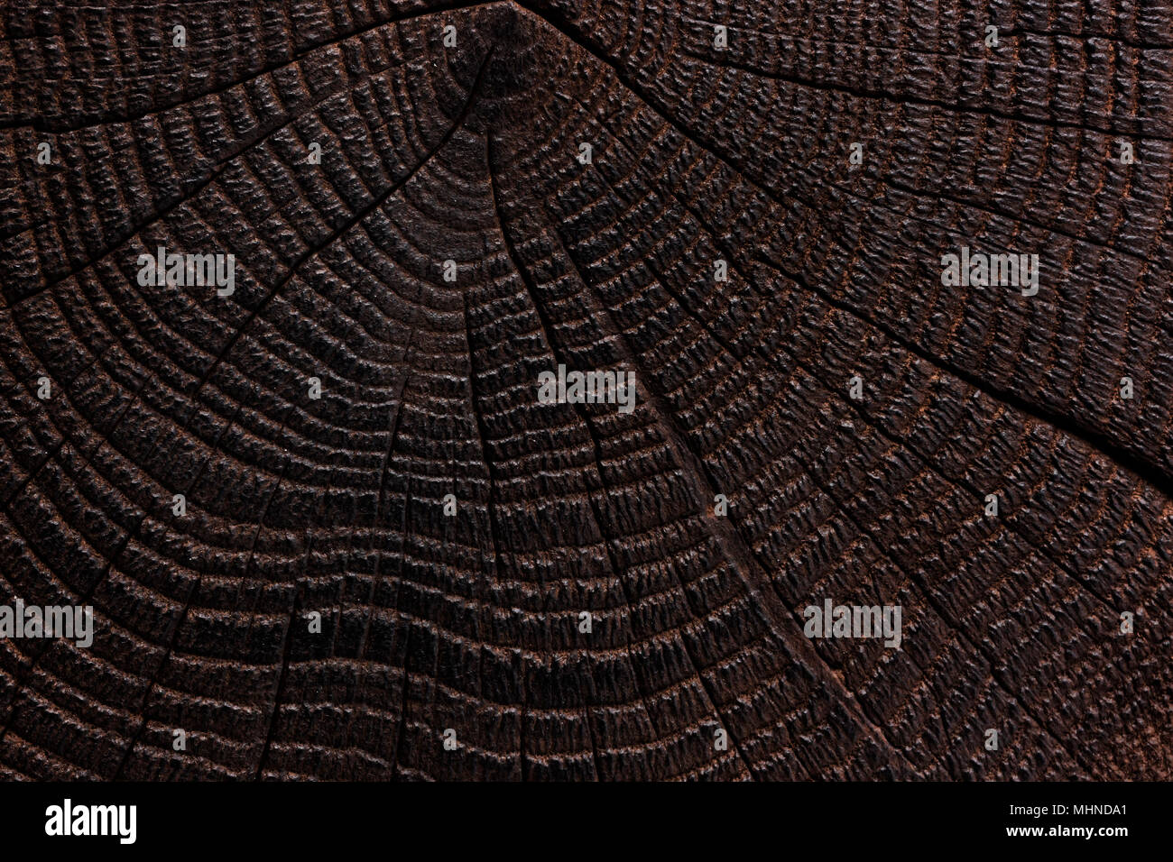 Burnt Wood Texture. Dark Wooden Background. Close Up
