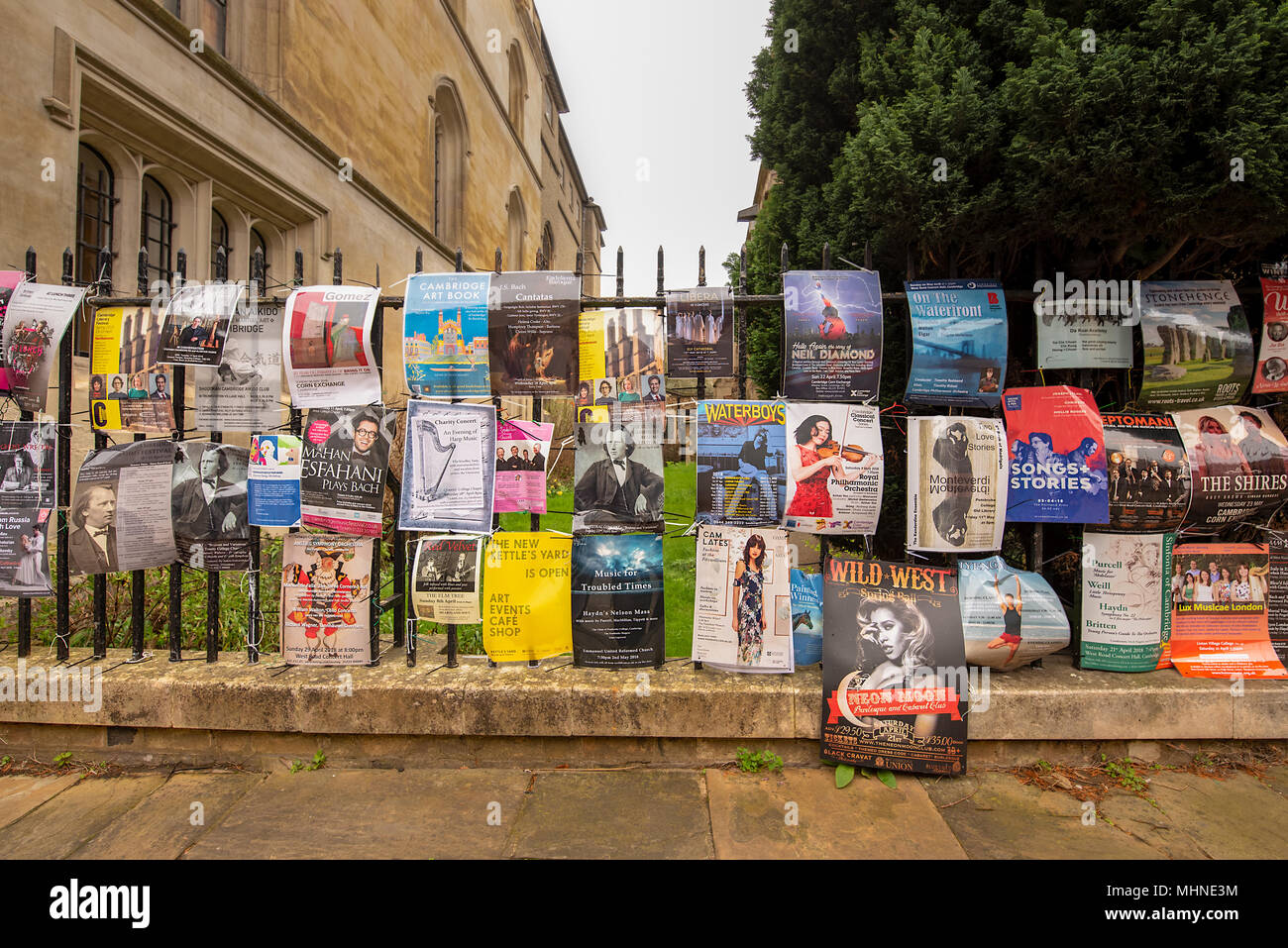 An iron railing fence covered in colourful flyers and posters promoting concerts and performances. A common sight in Cambridge, UK. - Stock Image