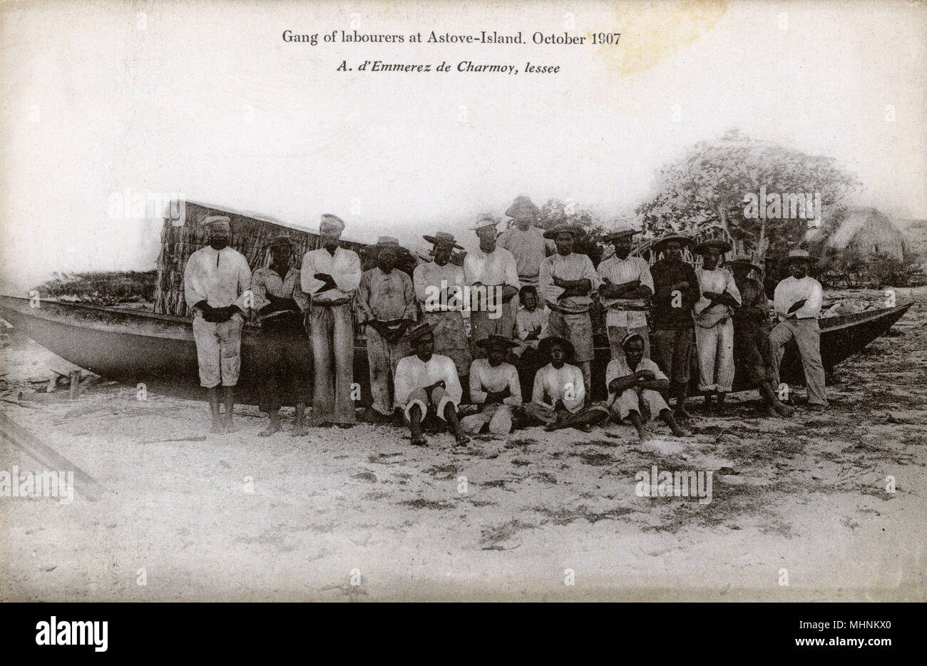 Gang of Labourers - Astove Island, part of the Cosmoledo Group, part of the Outer Islands of the Seychelles, lying in the southwest of the island nation, 1,000 kilometres (620 miles) from Mahe Island. The whole island appears to have been turned over to the harvesting and drying of mangrove bark.      Date: 1907 - Stock Image
