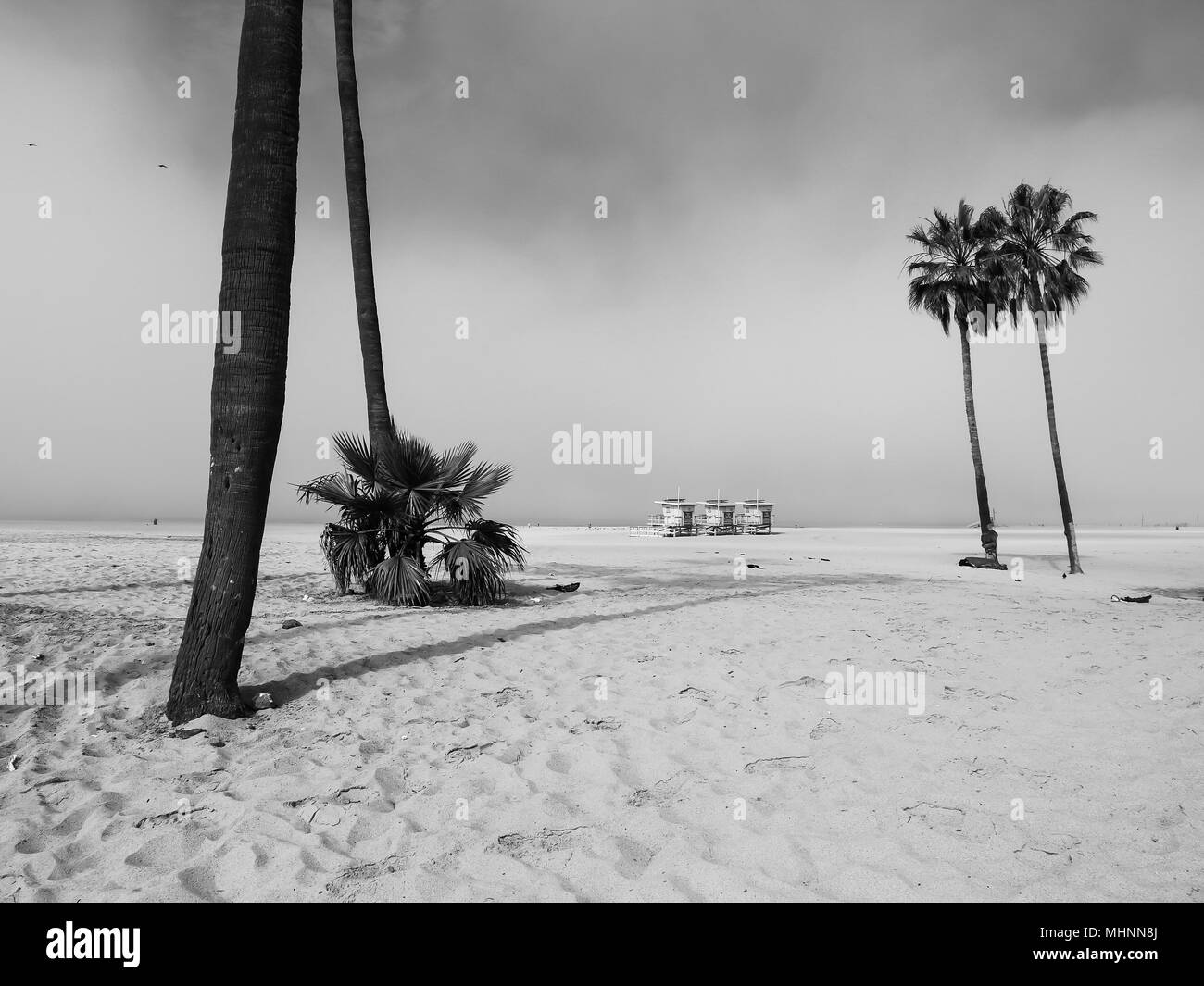 lifeguard cabins and palm trees in venice beach Stock Photo