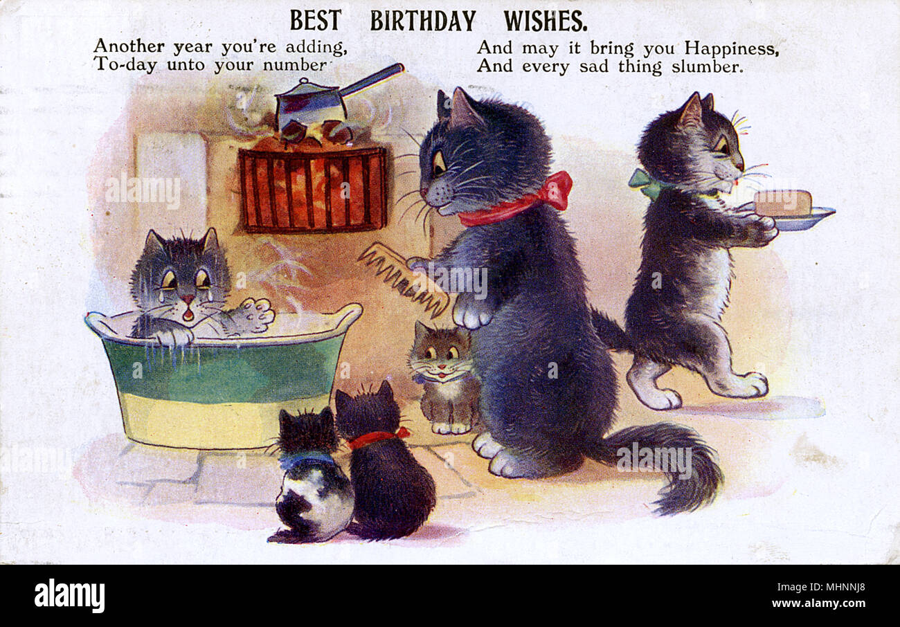 Birthday Greetings postcard - A family of Cats at bathtime. The kitten in the bath is not looking forward to having his/her hair combed...     Date: circa 1922 - Stock Image
