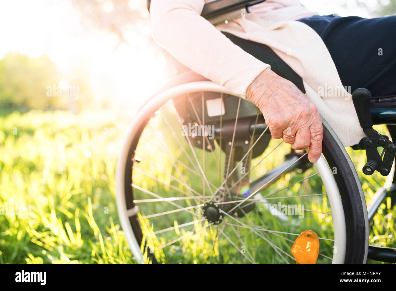 Elderly woman in wheelchair in spring nature. - Stock Image
