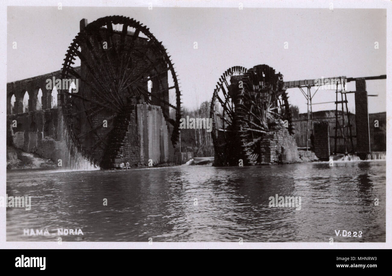 Hama, Syria. The city is renowned for its 17 norias (waterwheels) used for watering the gardens, which date back to 1100 BC. Though historically used for purpose of irrigation, the norias exist today as an almost entirely aesthetic traditional show.     Date: circa 1910s Stock Photo