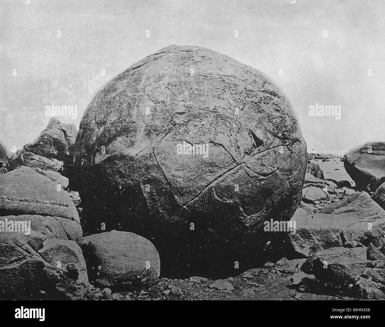 Large round boulder, 40 feet in circumference, Hokianga Beach, North Island, New Zealand. Large numbers of these hard granite rocks can be found in the area.      Date: circa 1900 - Stock Image